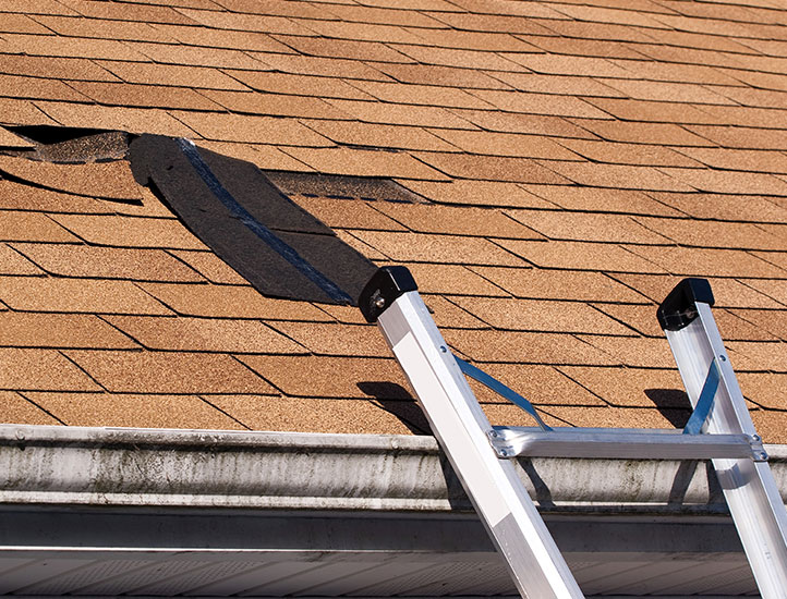Roofing Maintenance and Cleaning